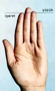 uzun yuzuk parmagi