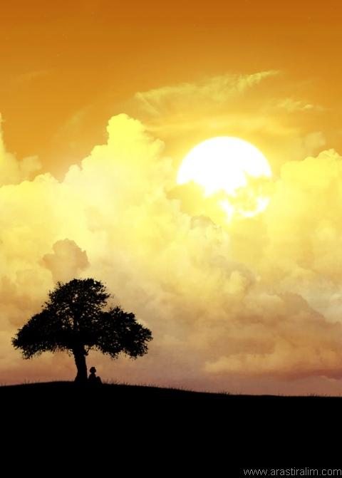 Işığa Sığınmak