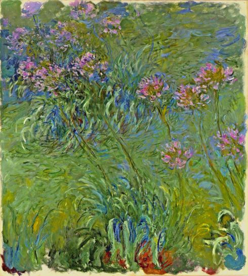 Claude Monet Paintings Agapanthus Flowers jpg